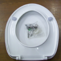 Celmac Rondo / Annan Toilet Seat - Stainless Steel Hinges- 02000018